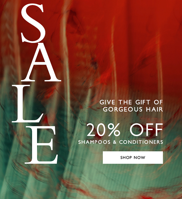 Give the gift of great hair - 20% off Hair care